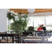 Dorota Pawłowska i Zbyszek Wardęga w ogrodzie w jadalni. A zima za oknem.