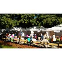 Międzynarodowy Dzień Osób Starszych. Piknik w Ogrodzie Saskim