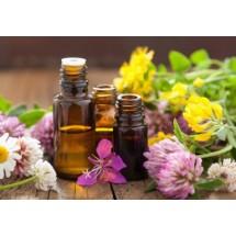 Liczne badania potwierdzają przeciwbakteryjną, przeciwwirusową, przeciwgrzybiczą i przeciwpasożytniczą oraz przeciwzapalną aktywność wielu olejków eterycznych.