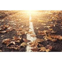 Spacer w parku wśród opadłych, kolorowych liści może zakończyć się napadem kaszlu lub nieprzyjemnym katarem. I to nie musi być przeziębienie!