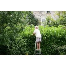 Nie wolno dopuścić, by osoba chora na osteoporozę wchodziła na stołek czy drabinę. W pracach na wysokościach trzeba ją zastąpić.