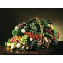 Błonnik zawarty w produktach zbożowych nierafinowanych, warzywach i owocach odgrywa ważną rolę w regulacji pracy jelit. Obniża też wchłanianie cholesterolu i zmniejsza ryzyko raka jelita grubego.